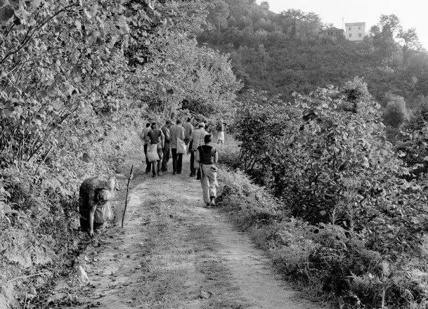 Naim Tirali (1925 – 2009) – İskele (Park, 1948)